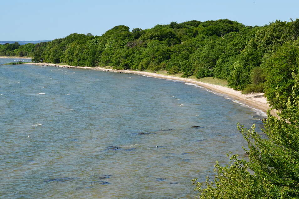 Baden verboten: Vilm ist Teil des Biosphärenreservats und Naturschutzgebiets.