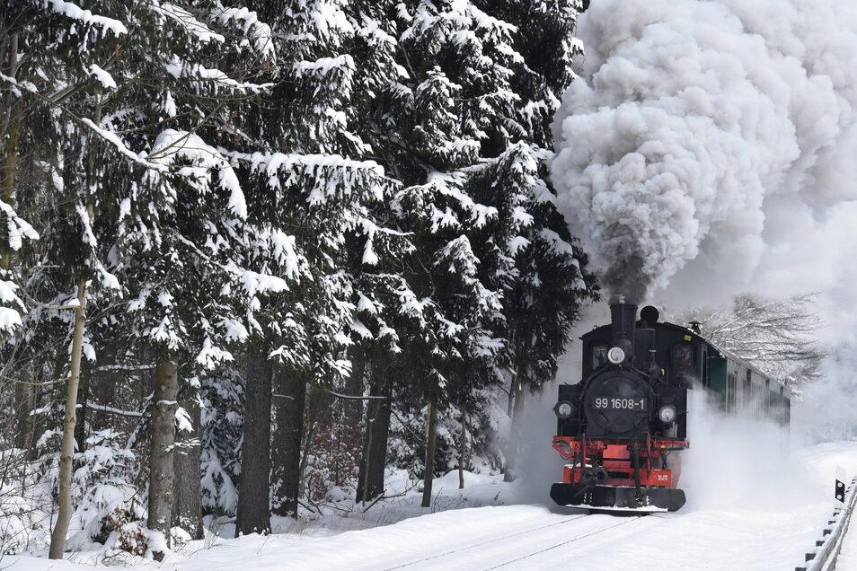 Die IV K unterwegs im Winterwald, kurz vor der Einfahrt im Bahnhof Kipsdorf.