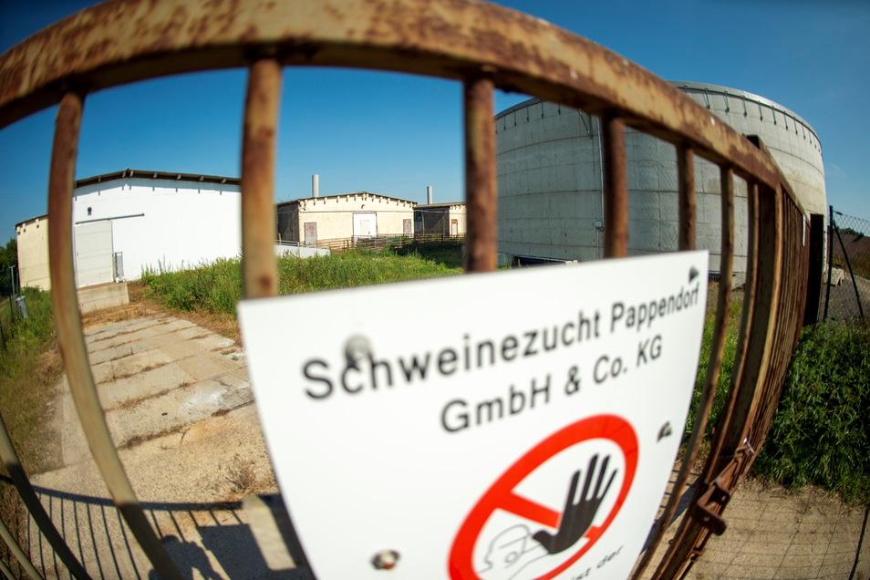 Die Schweinezuchtanlage in Stroga verändert Details ihrer Arbeit. Dafür bedarf es immissionsschutzrechtlicher Präzisierungen.