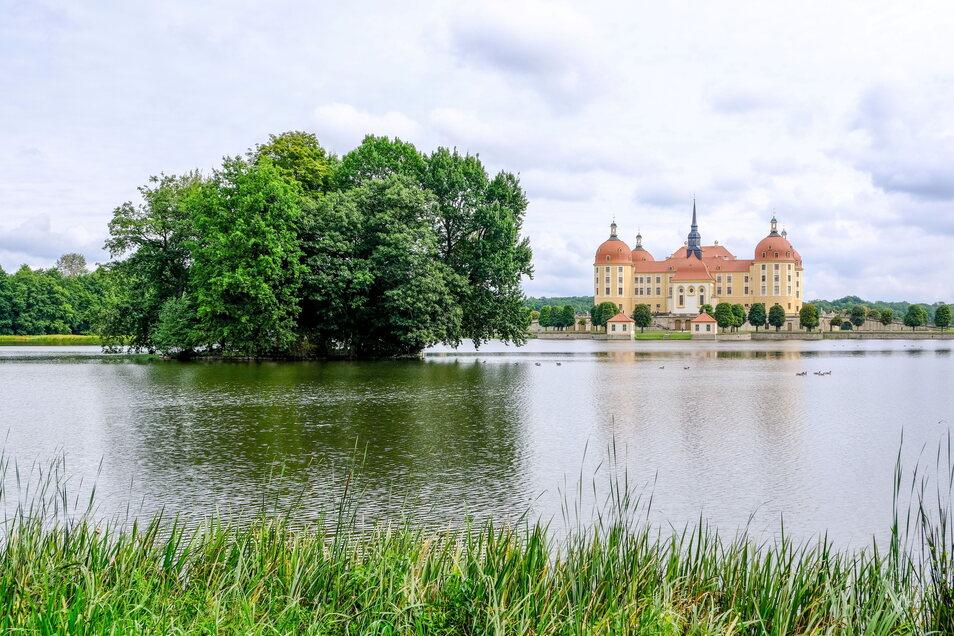 anders als in den vergangenen trockenen Jahren ist diesmal nicht nur der Moritzburger Schlossteich randvoll mit Wasser gefüllt.