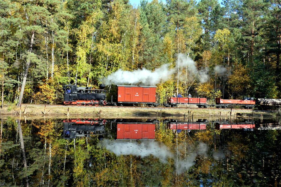 Muskauer Dampf der Brigadelok 99 3315 vor romantischer Kulisse samt Spiegelung – jetzt steht sie für die Dampflok-Tage der Parkeisenbahn Cottbus bereit.