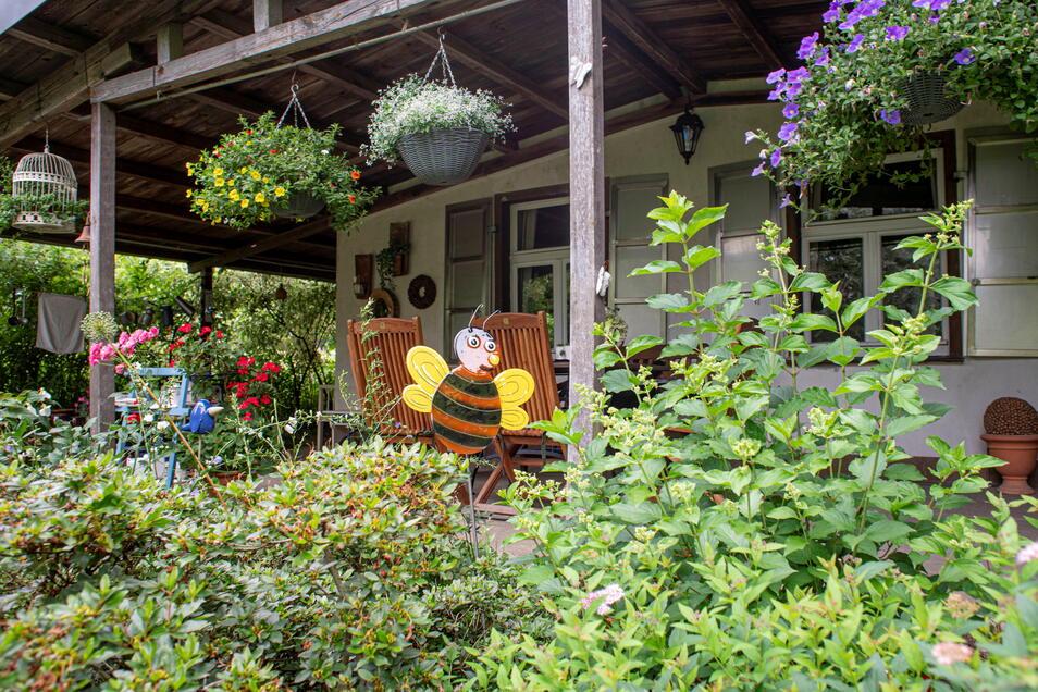 Hinter Grün versteckt: das Gartenhaus von Hannelore Knöfel.