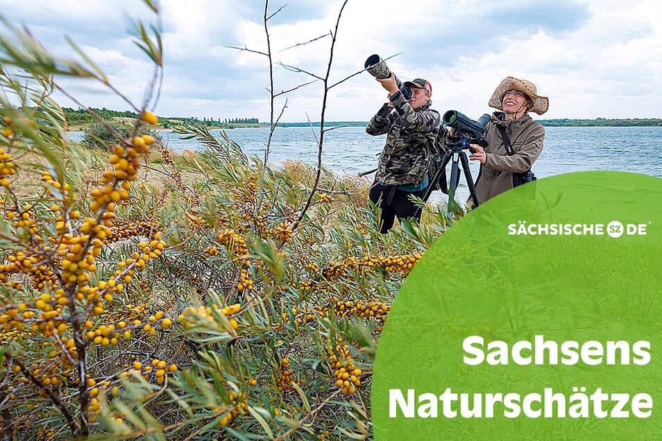 Der 18-jährige Hobby-Ornithologe Erik Eckstein und die Biologin Heike Franke erkunden mit Kamera und Spektiv die Vogelwelt am Werbeliner See bei Leipzig. Auch bei den öffentlichen Exkursionen im Naturschutzgebiet hilft der Schüler ehrenamtlich mit.