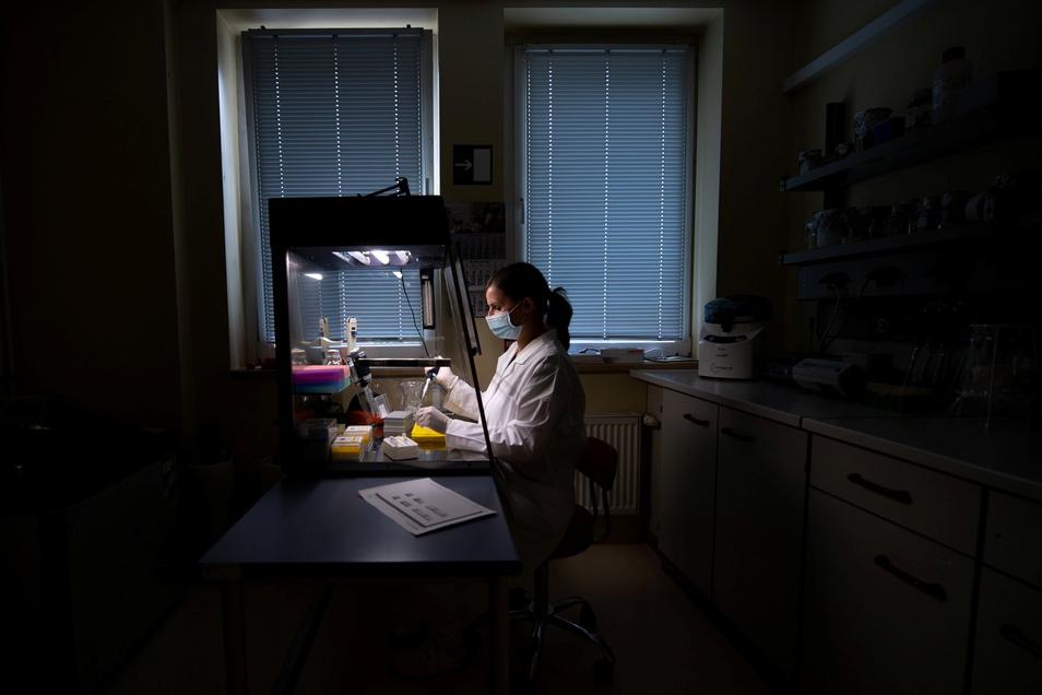 Wissenschaftler in Halle untersuchen Abwasser auf den Coronavirus Erreger. So könnte eine Art Frühwarnsystem eingerichtet werden.