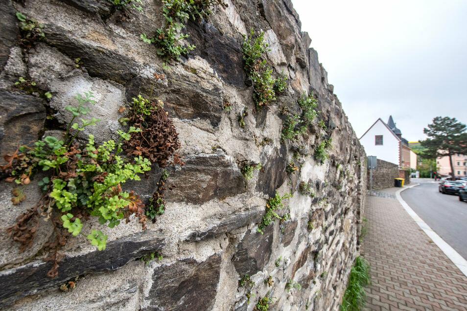 Ein Stück der ursprünglichen Mauer ist an der Poststraße noch erhalten, wenn auch nicht in Originalgröße.