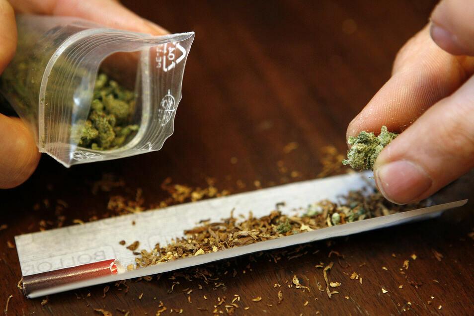 Ein Mann dreht sich einen Joint mit Marihuana. Den Rohstoff lieferte in der Oberlausitz laut Anklage auch ein Pärchen aus Zittau.