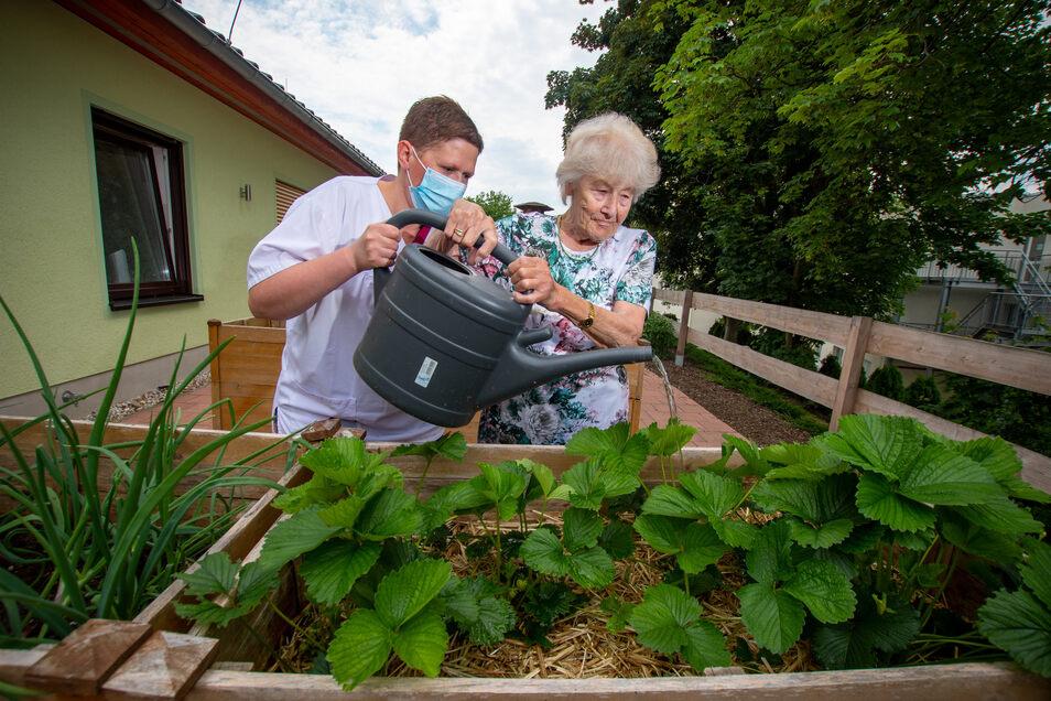 """Ruth Dietrich (rechts) gießt gemeinsam mit Pflegedienstleiterin Stephanie Koch die Erdbeerpflanzen im Hochbeet. In der Tagespflege der """"Pflege mit Herz"""" werden täglich bis zu 17 Gäste von sechs Mitarbeitern betreut."""