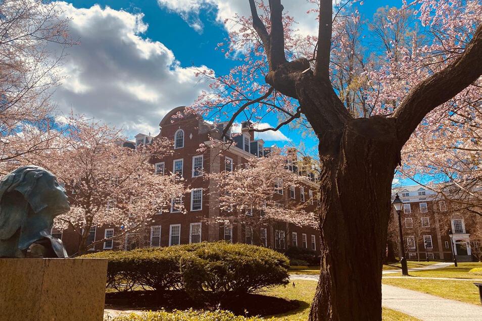 Harvard ist eine altehrwürdige Universität. Ihre Geschichte reicht zurück bis ins Jahr 1636, als in Europa der Dreißigjährige Krieg wütete.