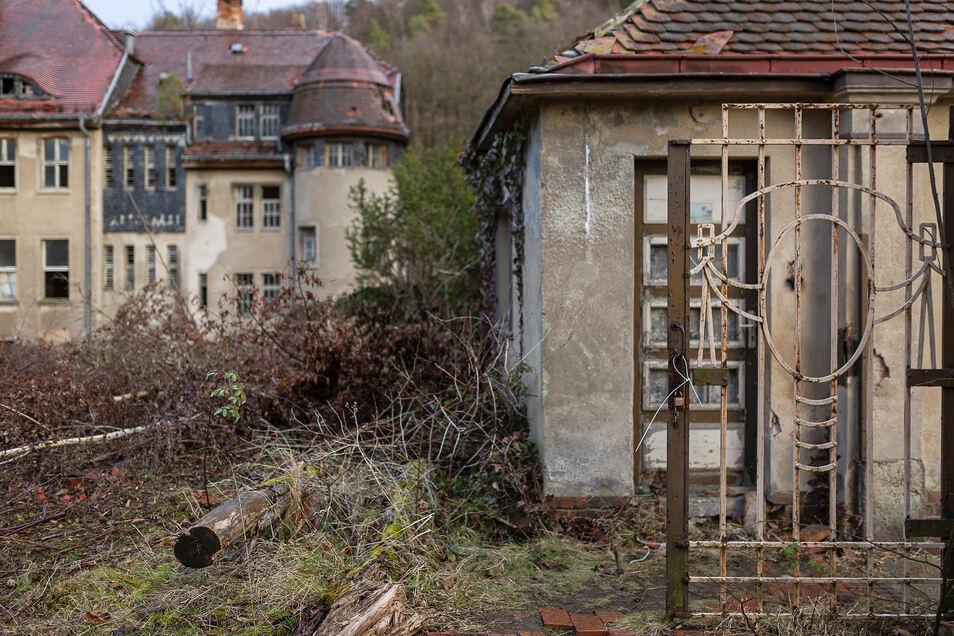 Das alte Kreispflegeheim in Freital-Saalhausen steht seit fast drei Jahrzehnten leer und verfällt.