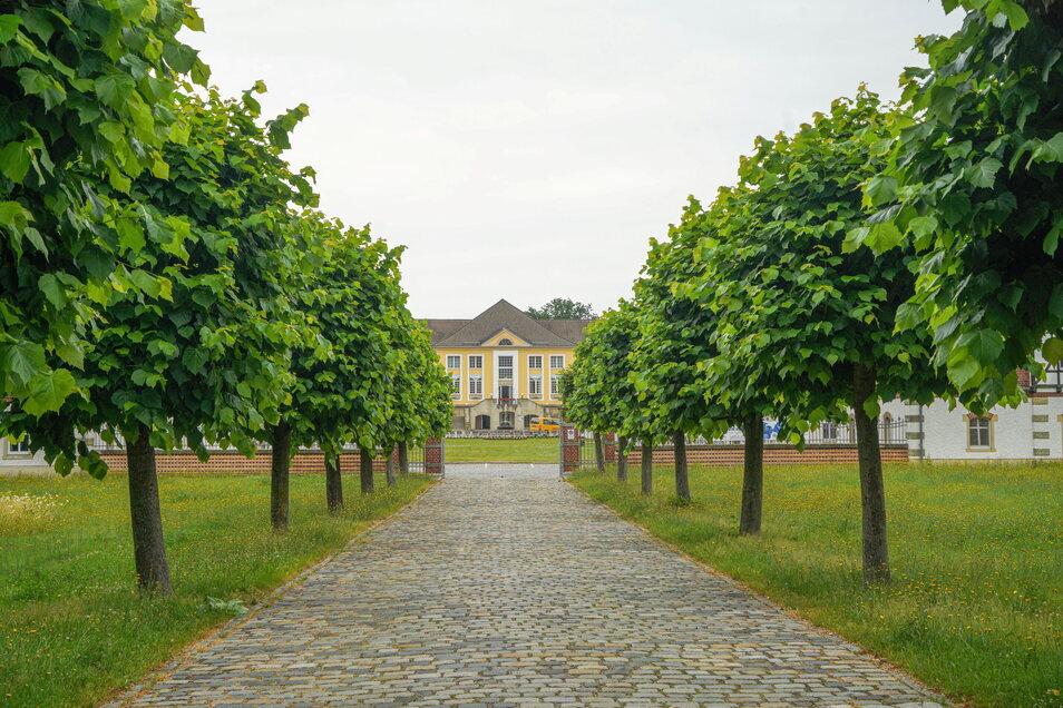Alleen wie diese sind typisch für Parks im Barock- und Rokoko-Stil.