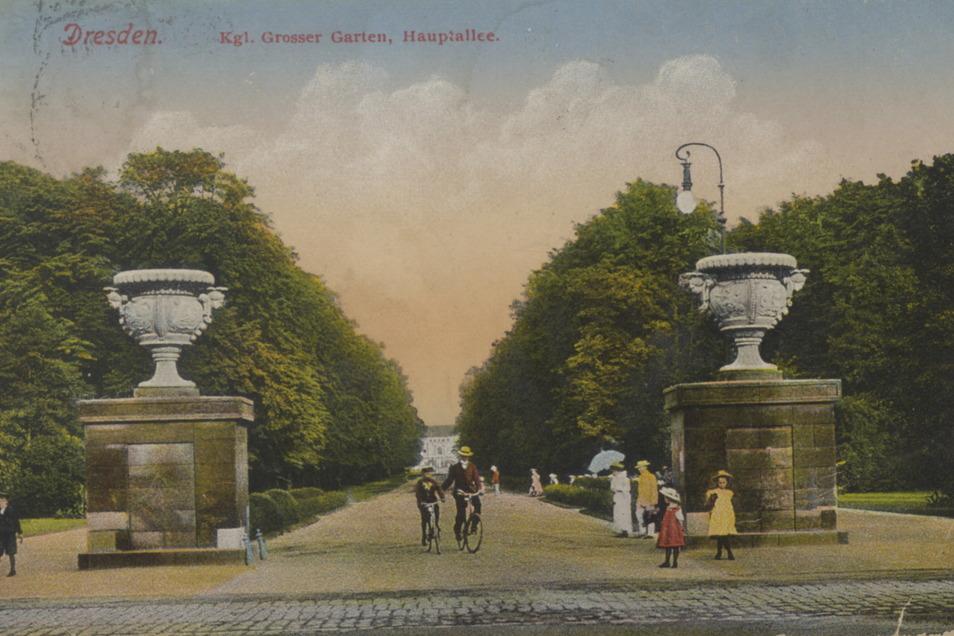 Diese Postkarte zeigt einen Blick zum Königlich Großen Garten um 1910. Zu dieser Zeit hatten die Prunkvasen schon 80 Jahre dort gestanden.