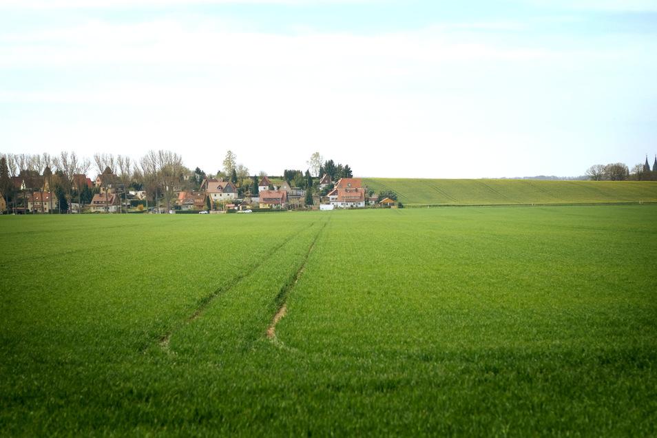 Blick von Norden zur Stadt Meißen am Ortsausgang Dieraer Weg. Wo sich jetzt noch ein Feld befindet, könnten sich einmal Firmen in einem neuen städtischen Gewerbegebiet ansiedeln.