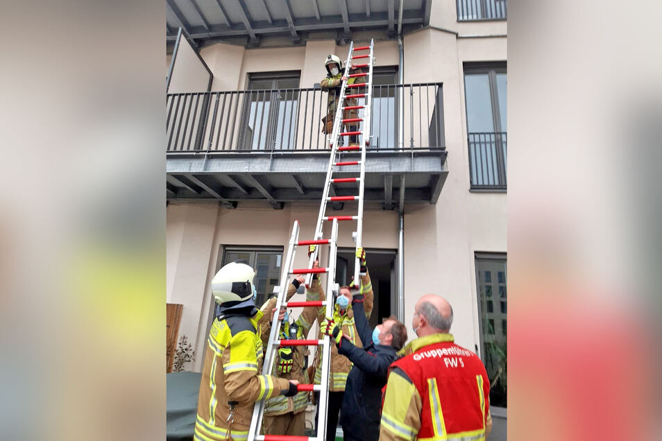 Die Tierrettung der Feuerwehr musste ausrücken, um eine Taube aus einem Netz am Balkon an der Marienstraße zu befreien.