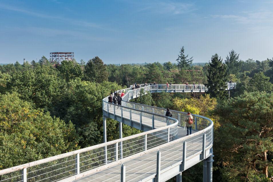 Auf dem Areal der historischen Heilstätten in Beelitz gibt es einen Baumkronenpfad und den Barfußpark. Ersterer bietet spannende Ausblicke auf die Dachwälder der Heilstättenruinen, der Park drei Barfußwege mit unterschiedlichen Materialen.
