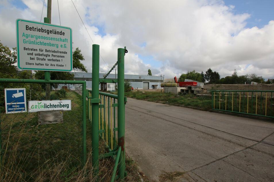 Auf dem Gelände der Agrargenossenschaft Grünlichtenberg in Reichenbach soll rechts neben der Einfahrt eine neue Halle gebaut werden. Die Anwohner befürchten, dass es dadurch mehr Krach und Verkehr in ihrem Ortsteil gibt.