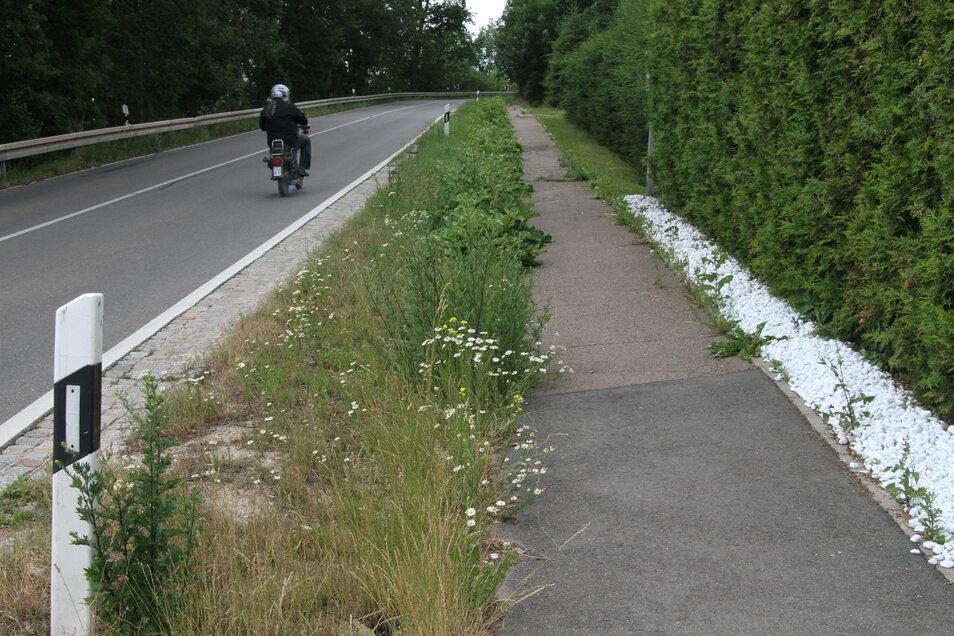 Dieser Teil des Fußweges in Zschepplitz soll saniert werden.