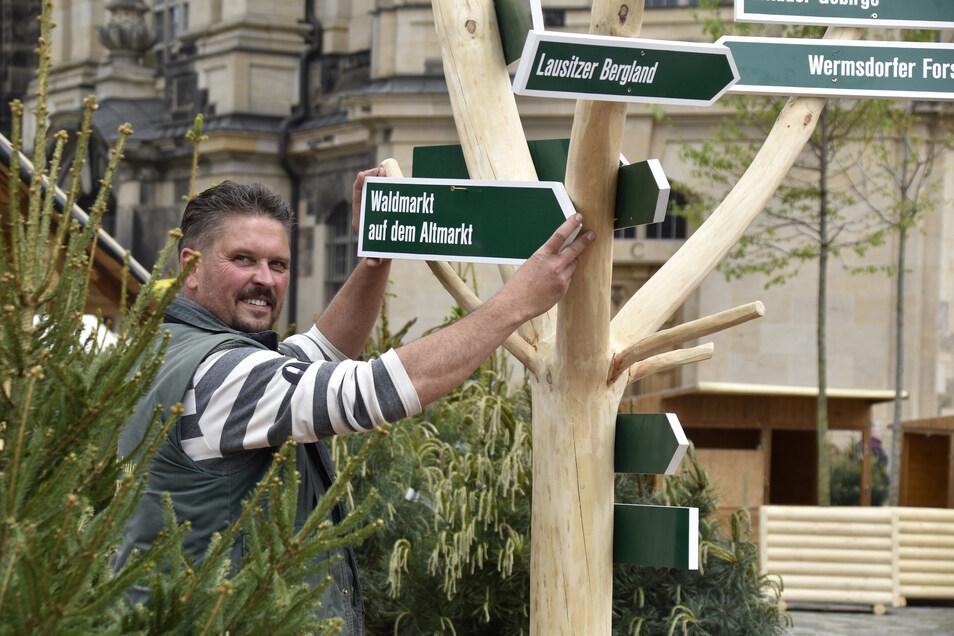 Ronny Kreiser von einer Gartenbaumschule aus Kreischa sorgt für Grün auf dem Neumarkt.