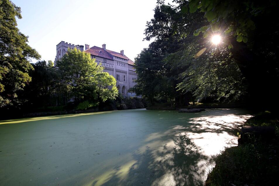 In den nächsten Wochen sind Besucher zu Konzerten und einem Kinoabend ans Seifersdorfer Schloss eingeladen.