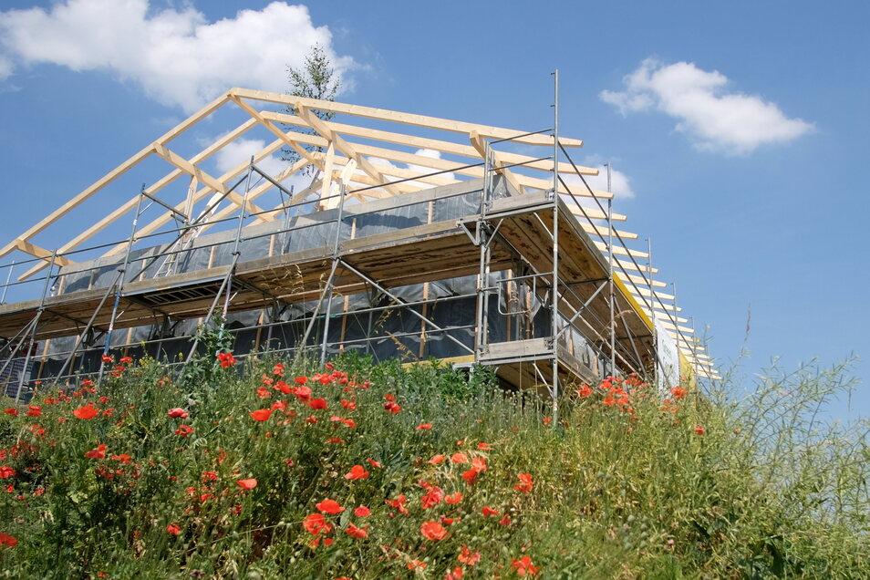 Der Mohn blüht, der Dachstuhl leuchtet hell: An einem besonderen Haus in Meißen konnte jetzt der letzte Nagel in die Dachkonstruktion eingeschlagen werden.