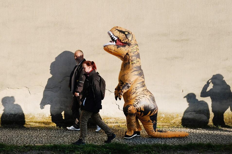 """Ein Ring""""-Spaziergänger"""" lief im Dino-Kostüm herum."""