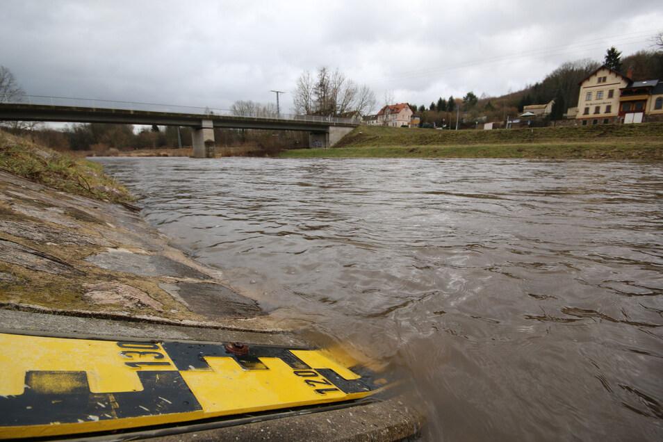 Endlich mal wieder Wasser in der Freiberger Mulde: Nach den Niederschlägen der vergangenen Tage ist der Pegelstand in Mahlitzsch erstmals wieder auf normalem Niveau.