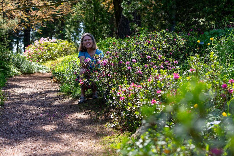 Annette Zimmermann lädt an diesem Sonntag zu Führungen durch den Botanischen Garten in Schellerhau ein.