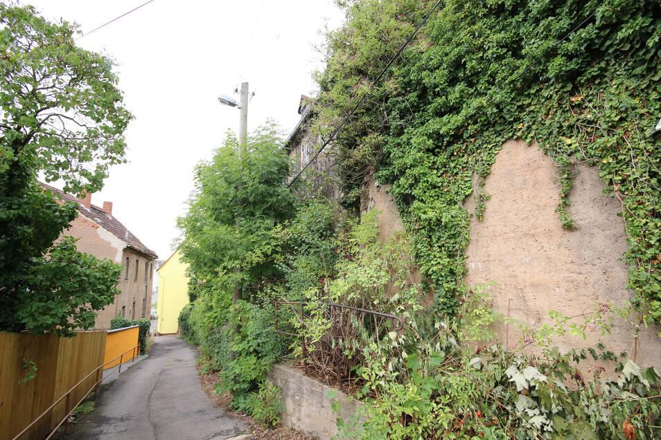 Mit wenig Platz müssen Anwohner und Bauleute ab November auf der Straße zur Wunderburg auskommen. Dort muss zunächst eine Stützmauer in Ordnung gebracht werden.