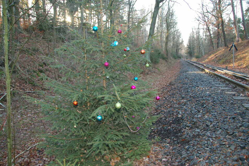 An der Weißeritztalbahn zwischen Malter und Seifersdorf grüßt dieser Weihnachtsbaum Wanderer und Reisende.