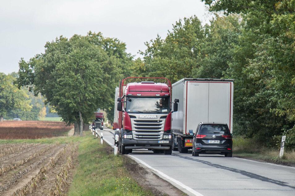 Nur 4,60 Meter breit ist die Betonstraße von Klitten nach Kringelsdorf. Für zwei sich begegnende Lkw zu schmal. Einer muss auf den Randstreifen ausweichen. Ursprünglich diente die Straße für den Werkverkehr in dem Braunkohlegebiet.