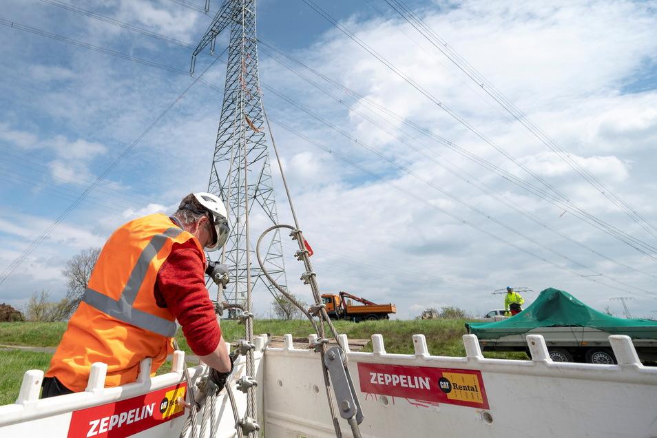 Vier stabile Stahlseile sichern jetzt den Mast an der Elbe. Der im Vordergrund überquert den Elberadweg.