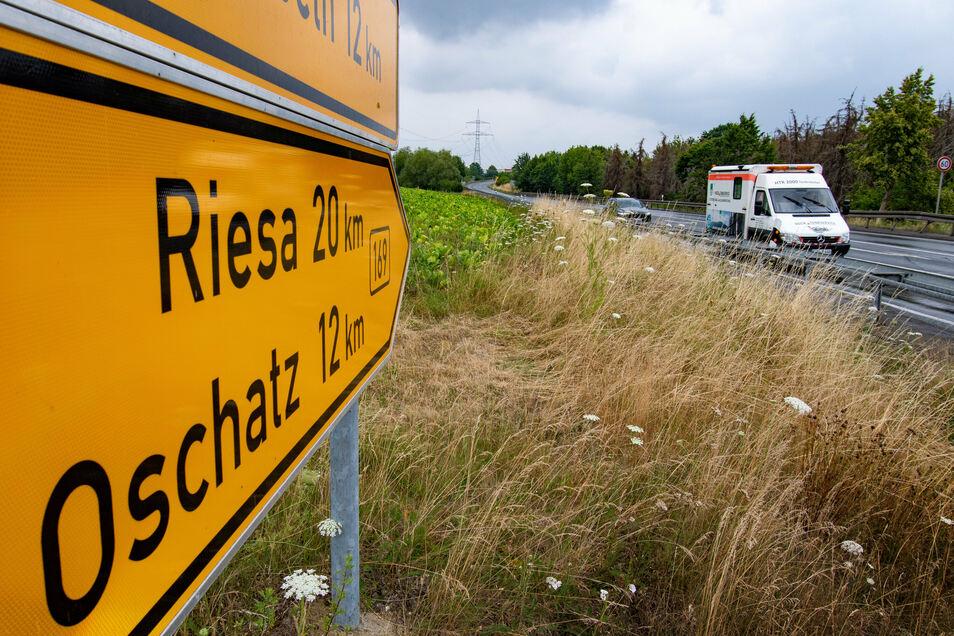 Die B169 bei Ostrau soll ausgebaut werden. Damit ist der Gewerbeverband nicht zufrieden.