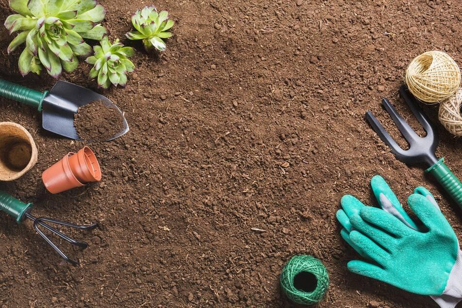 Bereit für den Gemüsegarten? Im März können die ersten Aussaaten starten.