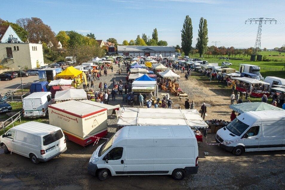 Zum ersten Mal auf der Festwiese: Der Bauernmarkt lockte mit seinen 60 Händlern zahlreiche Besucher nach Altkötzschenbroda.