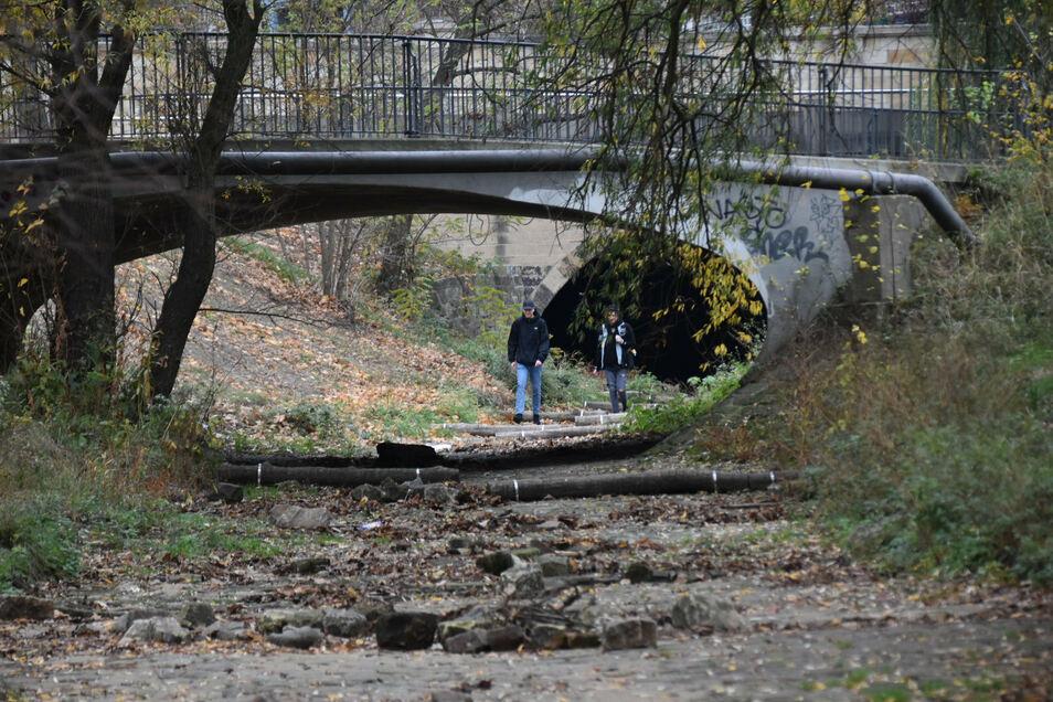 Auch ganz ausgetrocknet war die Prießnitz in früheren Jahren bereits . Dann lud das Flussbett zum Spazieren ein.