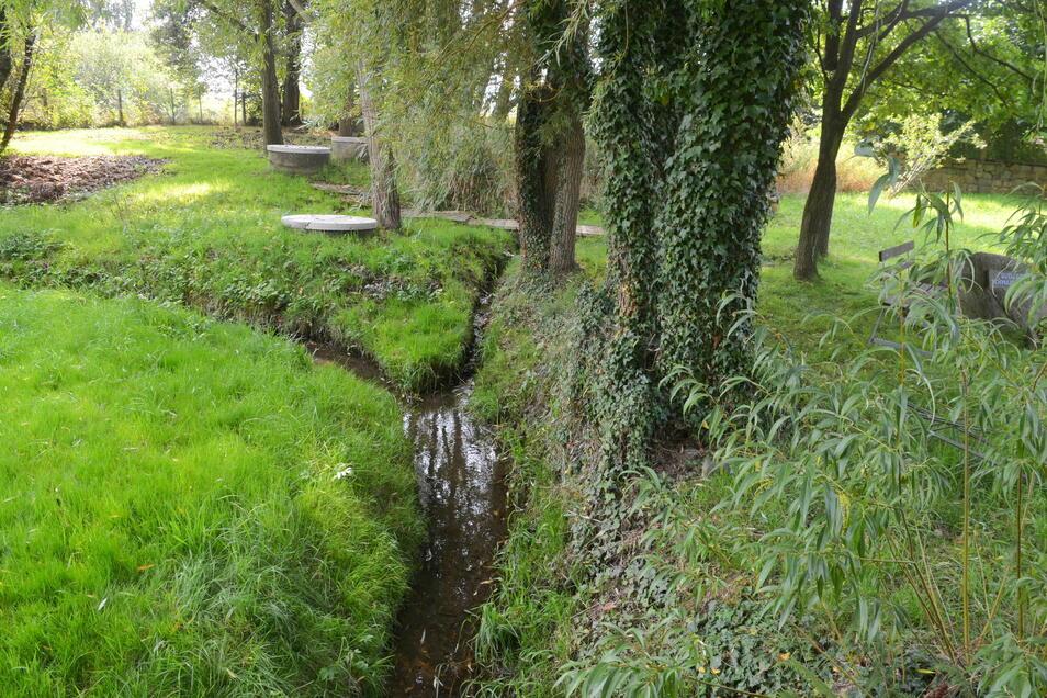 So winzig und überschaubar sieht der Beginn des Flusses aus.