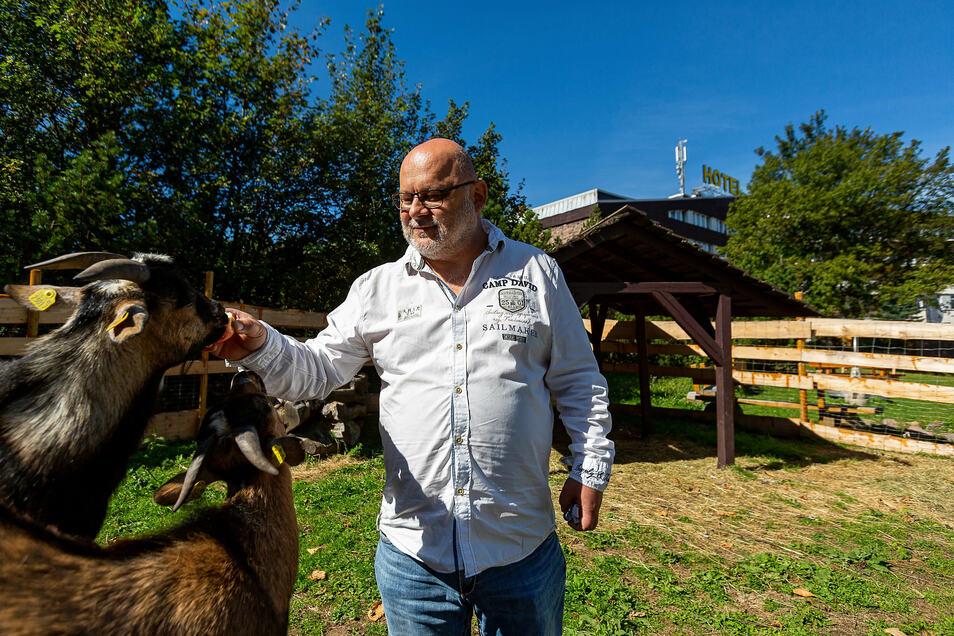 Nicht nur für Kinder eine Attraktion: Andreas Sämann, Manager im Zinnwalder Lugsteinhof, füttert zwei junge Ziegenböcke im neuen Kleintierzoo des Hotels.