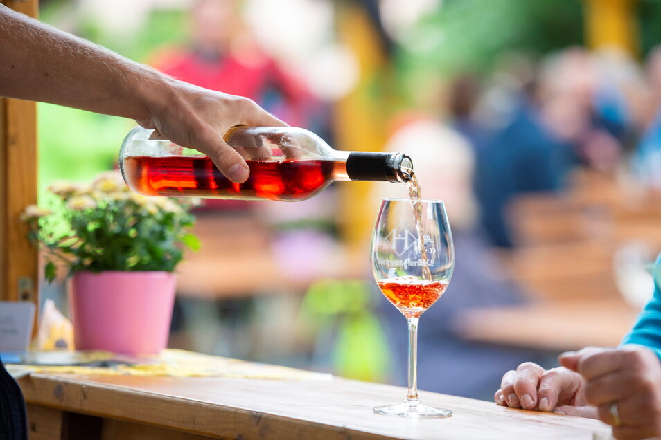 Zum Wohl! Am Sonntag war Petrus gnädig zu den Winzern und deren Besuchern - hier im Weingut Andreas Henke in Sörnewitz.