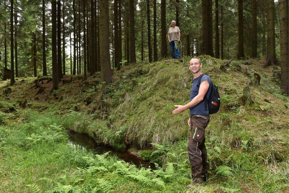 Dieser kleine Abhang mit dem Graben im Wald zwischen Schellerhau und Altenberg ist der Rest von Zinngewinnung in der Bronzezeit. Schon vor 4.000 Jahren haben Bergleute das Metall abgebaut.
