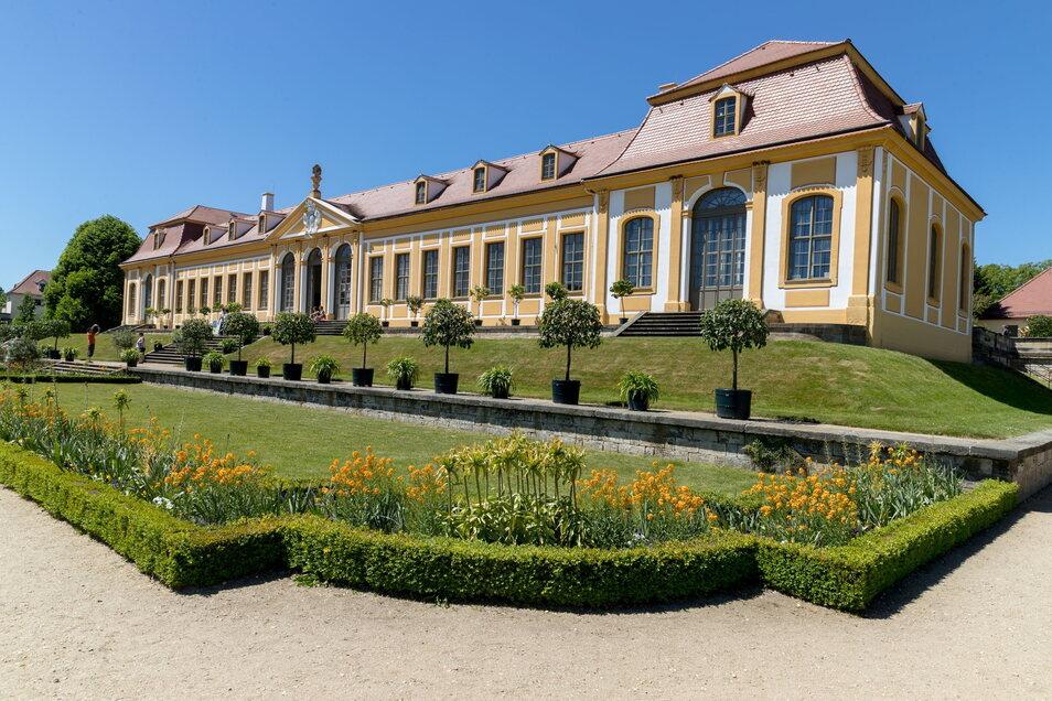 Der Barockgarten Großsedlitz: Ein Besuch lohnt sich.
