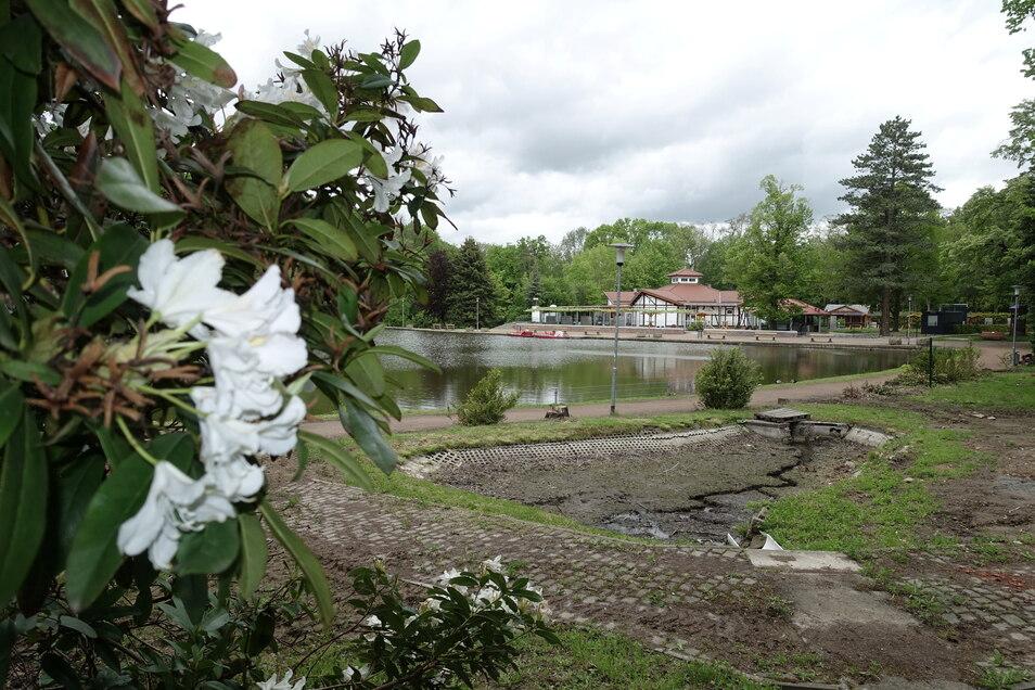 Das ehemalige Tiergehege im Bürgergarten ist schon abgebaut. Bis zur Neugestaltung dauert es aber noch. Im nächsten Jahr sollen die Arbeiten mit der Sanierung der Teiche und des Musikpavillons starten.