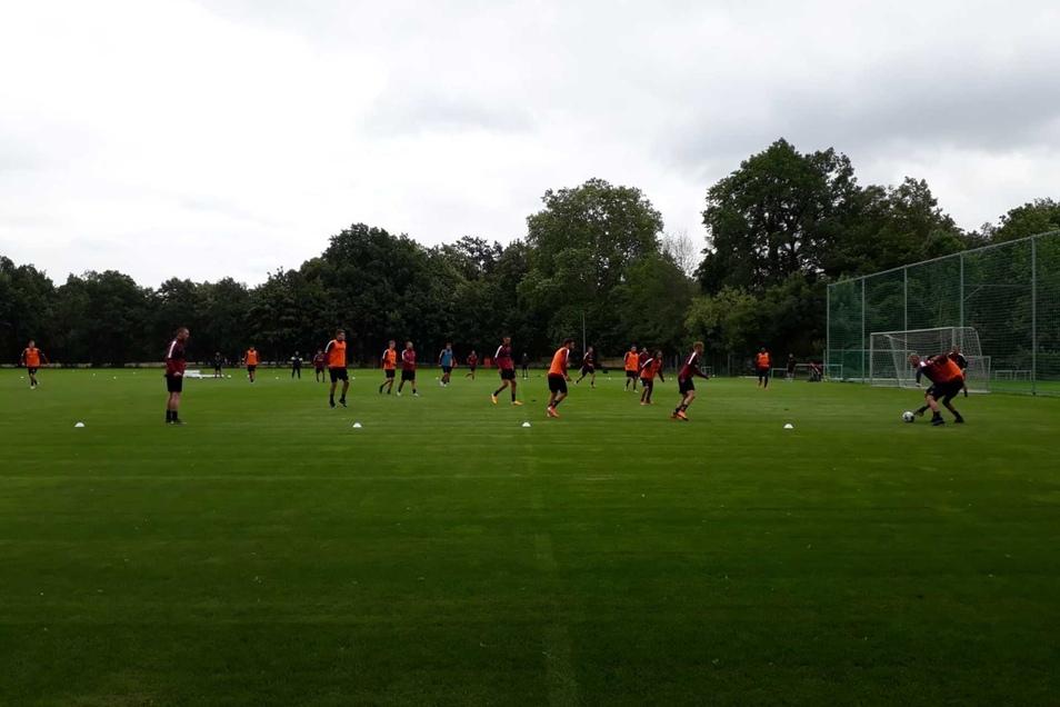 Auf dem Trainingsgelände im Großen Garten bereiten sich Dynamos Profis auf das Spiel gegen den französischen Meister vor.