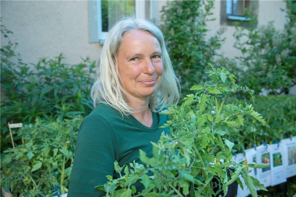 Großer Andrang herrschte beim Kräuter- und Krammarkt in Pesterwitz am Stand von Verkäuferin Birgit Kempe. Sie hatte Tomatenpflanzen zahlreicher Sorten im Angebot.