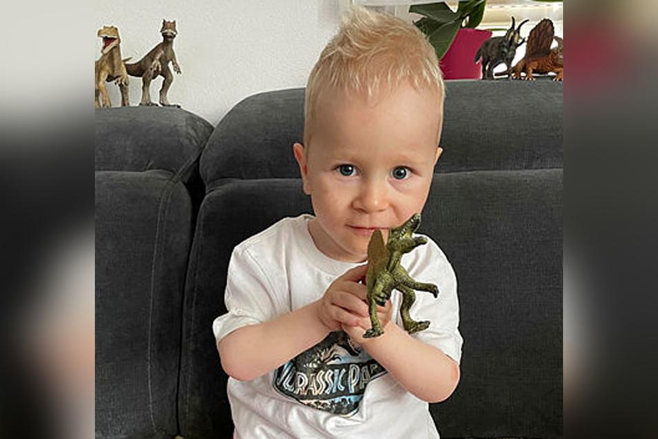 Schau mal, ein Dino. Der zweieinhalbjährige John aus Sebnitz kann heute selbstständig sitzen und mit der Plastikfigur spielen.