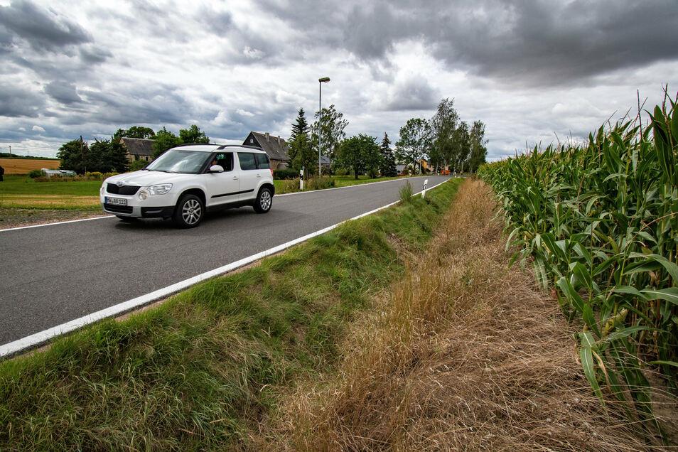 In Reinsdorf wird im Herbst die Straßenentwässerung erneuert.