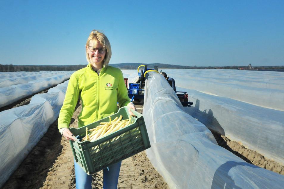 Der Spargel in Ponickau wächst auch in Zeiten der Isolation. Elizabeth Schöne ist in diesem Jahr besonders froh, dass das edle Gemüse rechtzeitig vor Ostern aus dem Boden kommt.