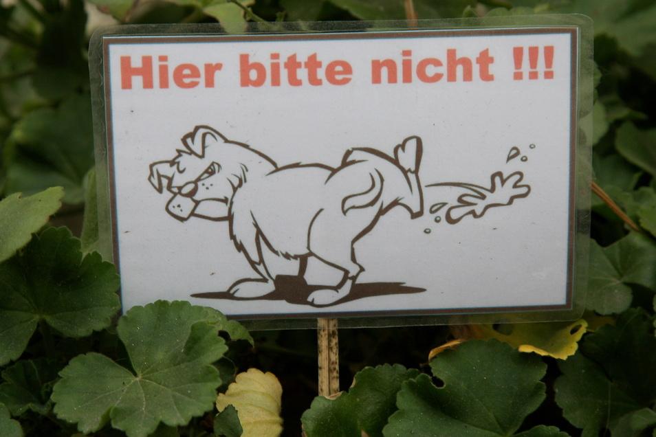 Händler und Geschäftsleute in der Pirnaer Innenstadt finden es nicht lustig, wenn Bello sein Bein an Pflanzkübeln, Hauswänden oder Aufstellern hebt.