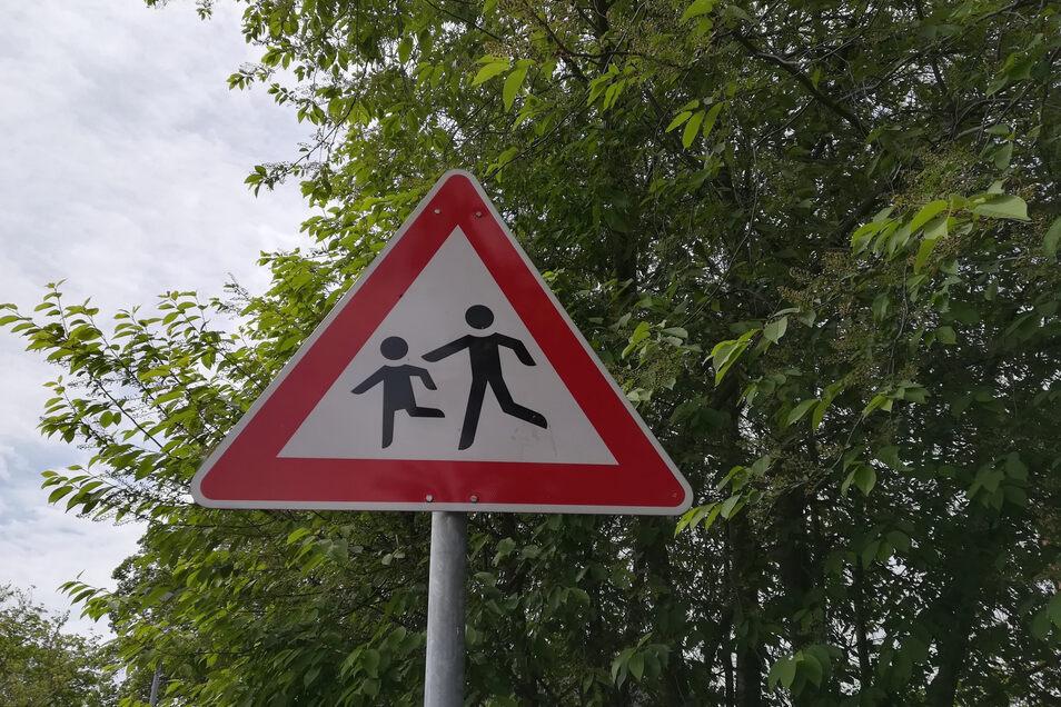 Ein solches Verkehrsschild soll die Kraftfahrer in Zukunft auch auf der Ortsdurchfahrt in Gleisberg sowie auf der Wetterwitzer Straße dazu animieren, etwas umsichtiger zu fahren.
