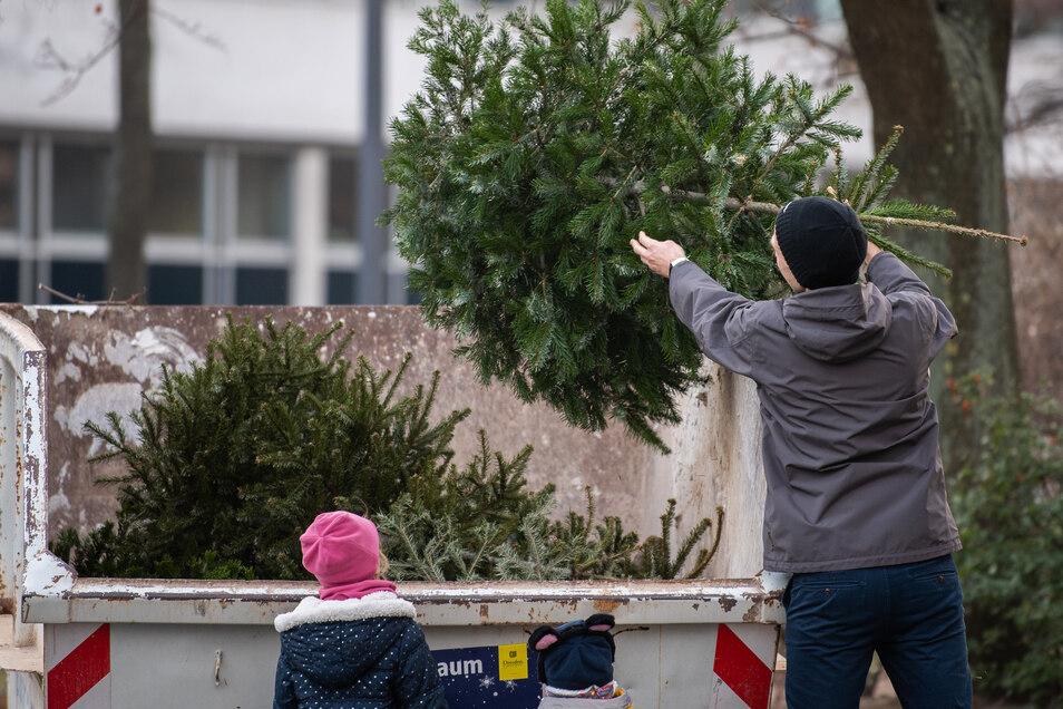 Ab in den Container mit dem Weihnachtsbaum. Die Bannewitzer haben noch eine andere Idee.