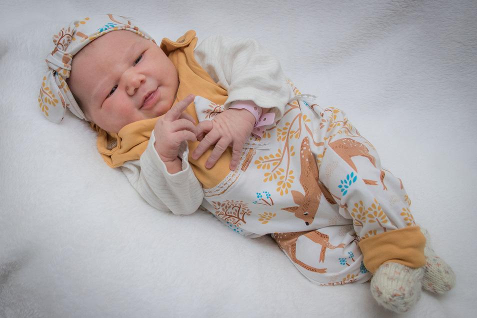 Anneke Höckendorff,geboren am 8. September, Geburtsort: Krankenhaus St. Joseph-Stift Dresden, Gewicht: 3.765 Gramm, Größe: 51 Zentimeter, Eltern: Nadine und Sven Höckendorff, Wohnort: Großröhrsdorf