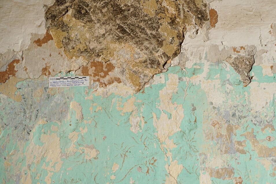 Mehr als 50 Farbschichten, das haben Untersuchungen ergeben, finden sich an den Wänden im Untergeschoss des Radiborer Torhauses.